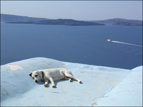 Dreaming-in-santorini-copy