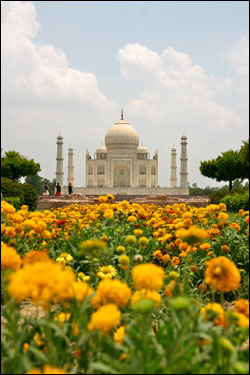 Back-of-the-Taj-Mahal