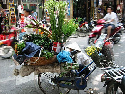 Vietnam-bicycle