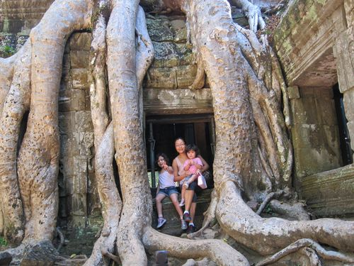 Ta_Prohm_temple_Cambodia