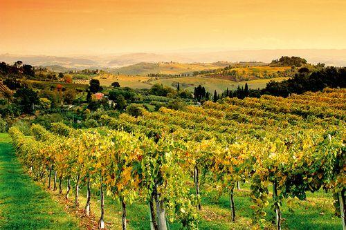 Tuscany0426_001u