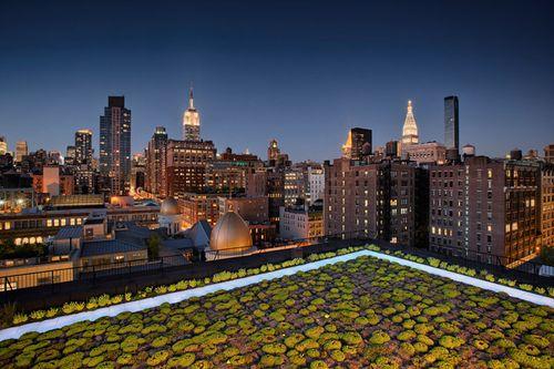Rooftopgardens0526_001u