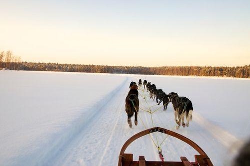 Lapland1205_001u