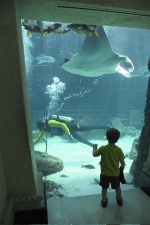 Atlantis_scuba_diver_2