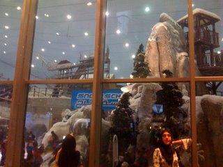 Mall_of_the_emirates_ski_slope_3