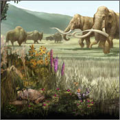 Pleistocene Backyard